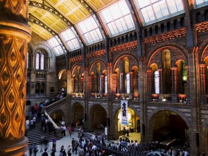 Fantastic Beasts: The Wonder of Nature @ National History Museum | England | United Kingdom