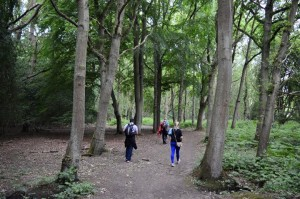 Walk and talk: Epping Forest @ Loughton Tube Station | Loughton | United Kingdom