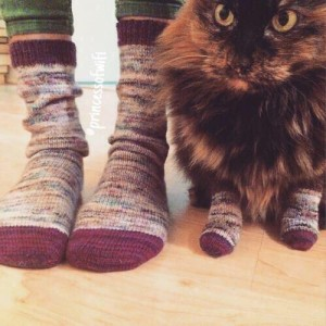 Friendship goals: cat with matching socks